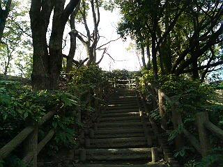 大倉山への登り