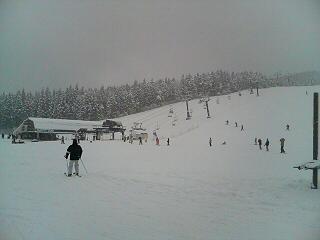 初見参スキージャム勝山