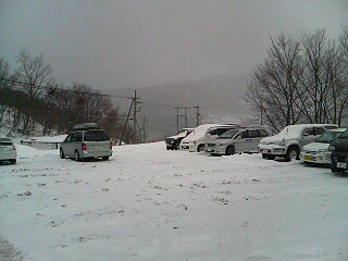 久々朝から雪
