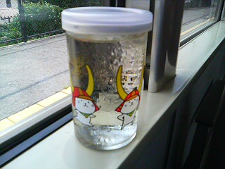 ひこにゃんワンカップ