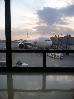 JALで帰る