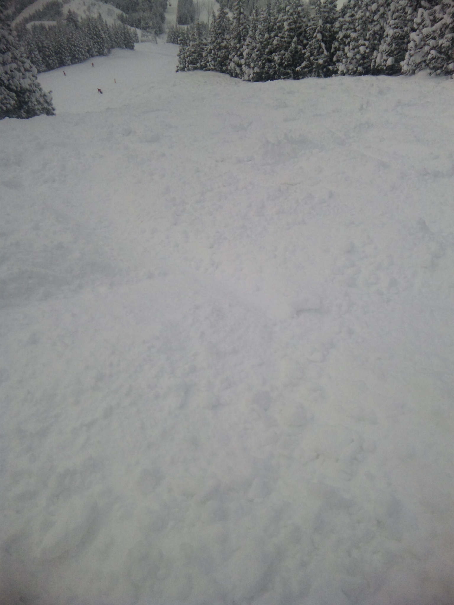 未圧雪ゾーン