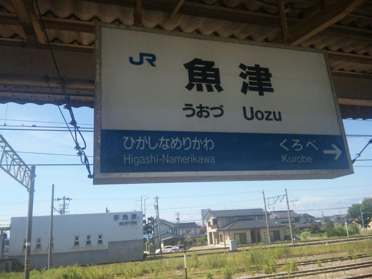 泣くな村椿