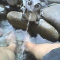 さとの湯の足湯